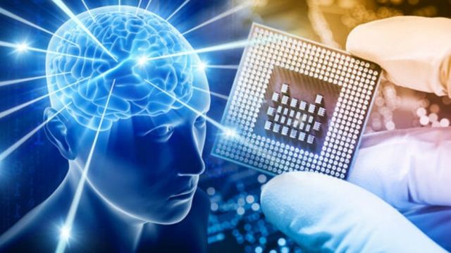 11102007-brain-power12